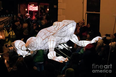 Photograph - Truro Lantern Parade Frog by Terri Waters