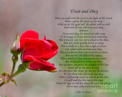 Photograph - Trust And Obey by Kerri Farley