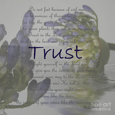 Photograph - Trust In The Lord by Ella Kaye Dickey