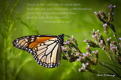 Photograph - Trust In The Lord Proverbs 3 by Reid Callaway