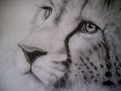 Cheetah Drawing - Trust by Katlyn Collins