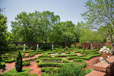 Photograph - Tryon Palace Gardens by Jill Lang