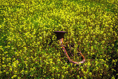 Laid -back Art Photograph - Tuba Among Wildflowers by Garry Gay