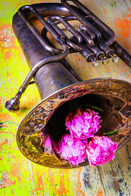 Tuba Photograph - Tuba And Peonies by Garry Gay