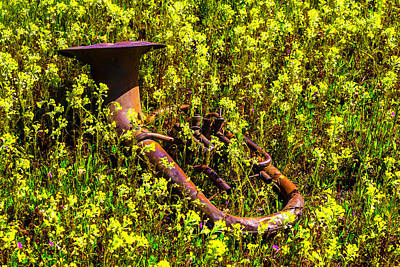 Laid -back Art Photograph - Tuba Laying In Wildflowers by Garry Gay