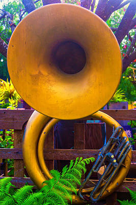 Tuba On Fence Art Print by Garry Gay