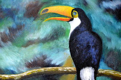 Painting - Tucan by Zuzana Perner