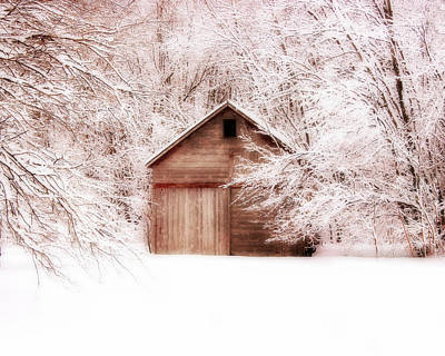 Country Cottage Photograph - Tucked Away by Julie Hamilton