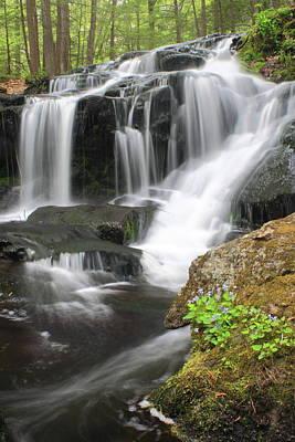 Photograph - Tucker Brook Falls And Violets by John Burk