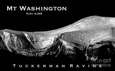 Photograph - Tuckerman Ravine by Sharon Seaward
