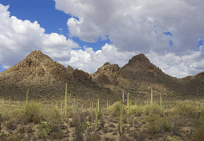 Tucson Mountains Art Print