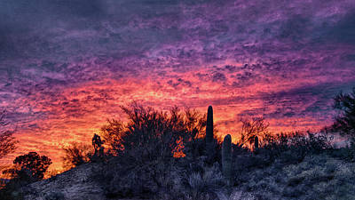 Photograph - Tucson Sunrise by Charlie Alolkoy