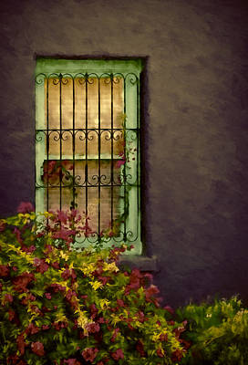 Photograph - Tucson's Window by Maria Coulson