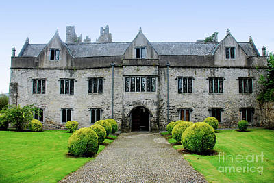 Tudor Manor - Carrick On Suir Art Print