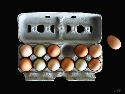 Photograph - Tuesday's Eggs by David Pantuso