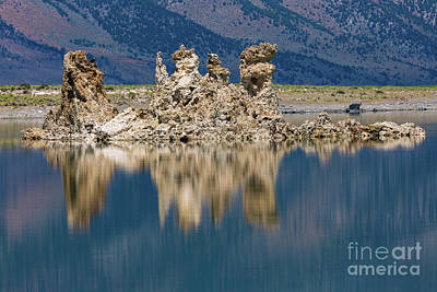 Photograph - Tuffa Reflection by Anthony Bonafede