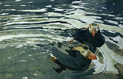 Painting - Tufted Puffins II by Kris Parins