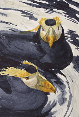 Sea Birds Painting - Tufted Puffins by Kris Parins