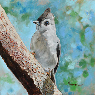 Titmouse Painting - Tufted Titmouse #1 by Amber Foote