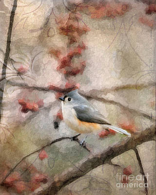 Tufted Titmouse Digital Art - Tufted Titmouse 2 by Betty LaRue