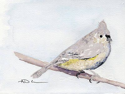 Tufted Titmouse Painting - Tufted Titmouse by Aaron Coe