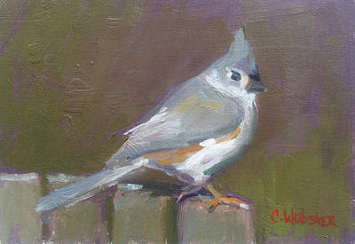 Tufted Titmouse Painting - Tufted Titmouse by Colleen Webster