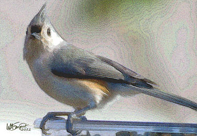 Tufted Titmouse Digital Art - Tufted Titmouse by William Sargent