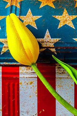 Weatherworn Photograph - Tulip And Old Lunch Box by Garry Gay