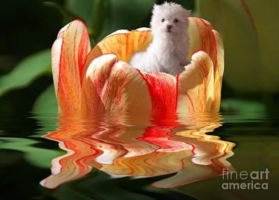 Digital Art - Tulip Boat Ride by Elaine Manley