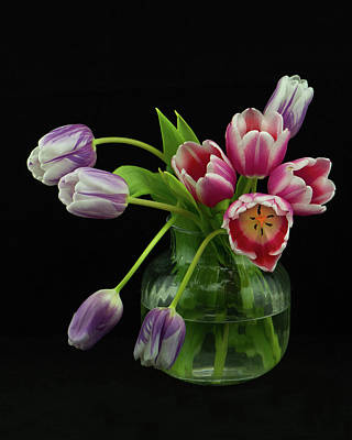 Photograph - Tulip Bouqet by Nancy Kirkpatrick