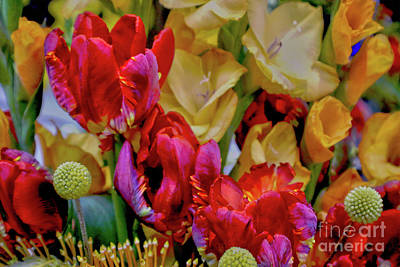 Photograph - Tulip Bouquet by Sandy Moulder