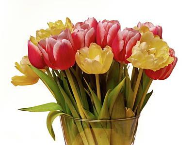 Photograph - Tulip Bunch by Jouko Lehto