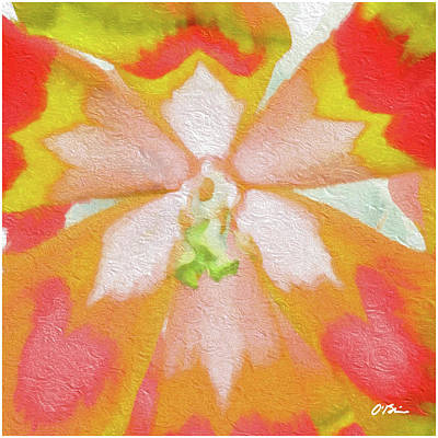 The Nature Center Digital Art - Tulip Centricity Love Abstract by Claudia O'Brien