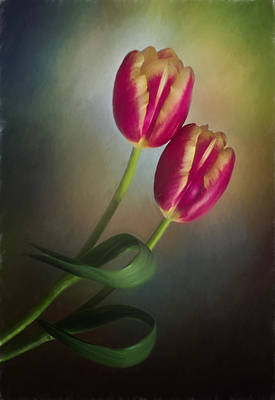Photograph - Tulip Choreography by David and Carol Kelly