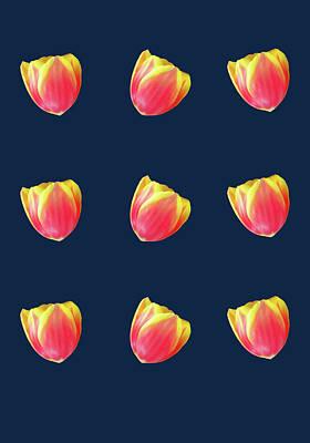 Photograph - Tulip Design by Johanna Hurmerinta