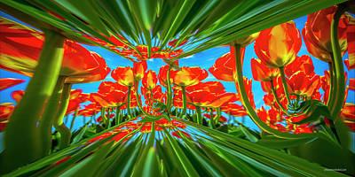Photograph - Tulip Dimensions by LeeAnn McLaneGoetz McLaneGoetzStudioLLCcom