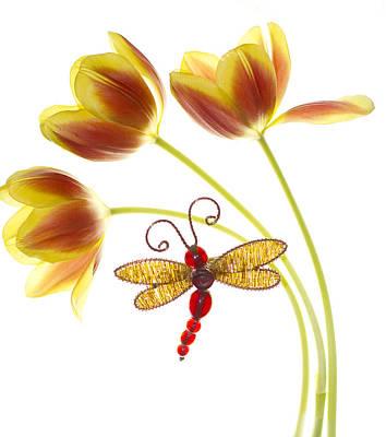Tulip Dragonfly Art Print by Rebecca Cozart