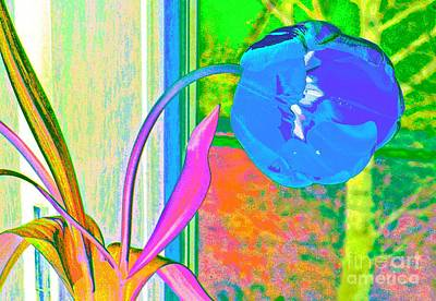 Digital Art - Tulip Dream In The Morning by Loko Suederdiek