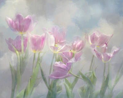 Tulip Dreams Art Print
