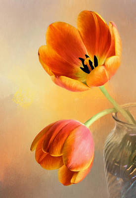 Photograph - Tulip Duo by David and Carol Kelly