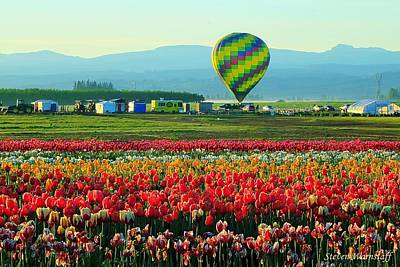 Tulip Field And Hot Air Balloon Art Print by Steve Warnstaff