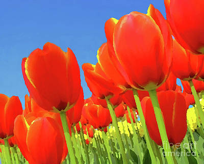 Tulip Field Art Print by Giancarlo Liguori