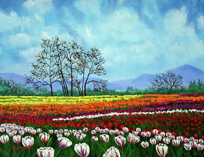 Tulip Fields Under White Fluffy Clouds Original