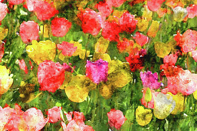 Photograph - Tulip Garden by Brandon Bourdages