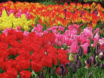 Skagit Digital Art - Tulip Garden by Kathy Moll