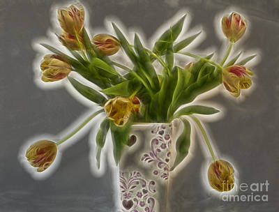 Photograph - Tulip Glow by Shirley Mangini