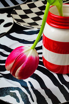 Tulip In Red And White Jar Print by Garry Gay