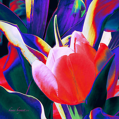 Mixed Media - Tulip Kisses Abstract 1 by Kume Bryant