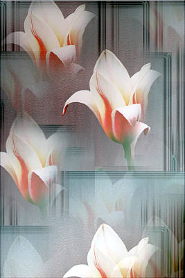 Tulip Multiplied Art Print by Debbie Nobile