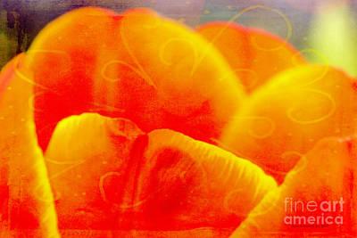 Photograph - Tulip Nectar by Jean OKeeffe Macro Abundance Art